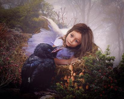 Фото Маленькая девочка-ангел сидит в гнезде, рядом с ней черный ворон на фоне лесного пейзажа в легкой дымке, вокруг растут грибы цветы ягоды, by Cindy Grundsten