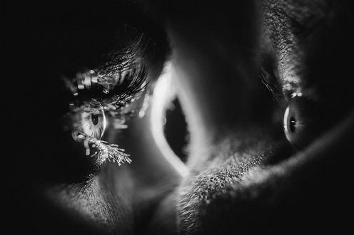 Фото Глаза влюбленных парня и девушки, фотограф Игорь Булгак