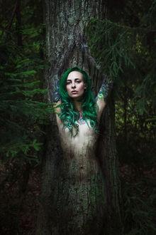 Фото Полуобнаженная девушка-дерево с зелеными волосами с татуировками на груди на фоне природы, by Karolina Ryvolova