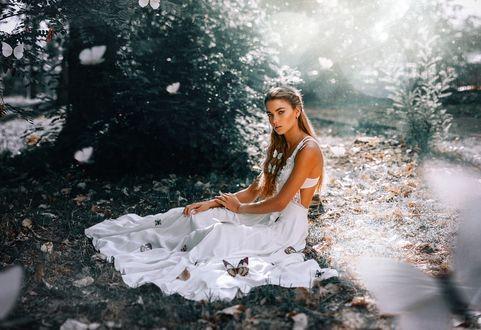 Фото Девушка в белом платье сидит на траве в окружении бабочек, фотограф Ronny García