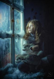 Фото Девочка со щенками сидит у окна, украшенного звездами, фотограф Сергей Князев