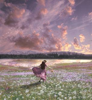 Фото Девочка идет по полю с цветами, by Aichan3