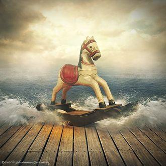 Фото Игрушечная лошадка- качалка на воде, Evenliu Photography