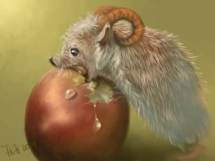 Фото Рогатый зверек ест яблоко, by Animal75Artist