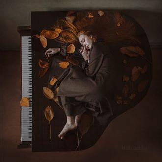 Фото Девушка лежит на рояле среди листьев, фотограф Anka Zhuravleva