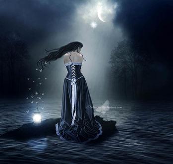 Фото Девушка посреди воды стоит на камне, рядом с ней фонарь вокруг которого летают бабочки, by Maiarcita