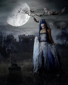 Фото Девушка-вампир стоит на кладбище на фоне луны и старого замка из которого к ней летят летучие мыши