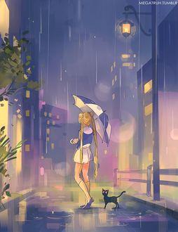 Фото Усаги Цукино / Usagi Tsukino и кошка Луна / Luna из аниме Сейлор Мун / Sailor Moon, by Megatruh