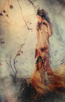Фото Полуобнаженная девушка прикрыта прозрачной тканью, фотограф Юлия Петрова