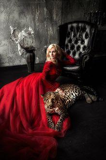Фото Модель Инна Ионина в красном платье лежит на полу облокотившись об кресло, рядом с ней лежит дремлющий леопард Джерри. Фотограф Мария Липина / Maria Lipina