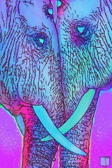 Фото Два слона уперлись бивнями