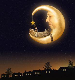 Фото Кот лежит на месяце и играет звездочкой, фотограф Ирина Кузнецова
