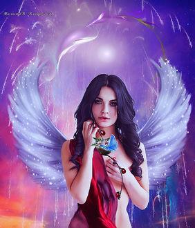 Девушка с крыльями держит в руке чашу с бабочкой и божьи коровки