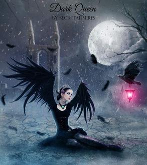 Фото Девушка в образе черного ворона сидит перед вороном с фонарем в клюве, by Secretadmires