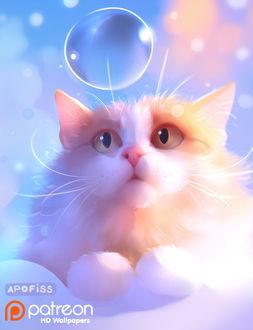 Фото Бело-рыжий котик смотрит на мыльный пузырь, by Apofiss