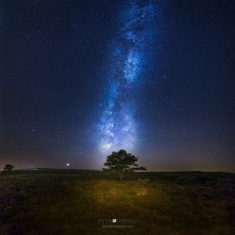 Фото Одинокое дерево стоит на фоне скопления звезд на небе, by Kevin Feriolly (© Margo Fly), добавлено: 25.02.2017 03:48