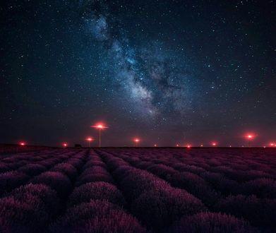Фото Лавандовое поле под небом с сияющими звездами, фотограф Krasi St Matarov / Краси Матаров (© Margo Fly), добавлено: 25.02.2017 04:21