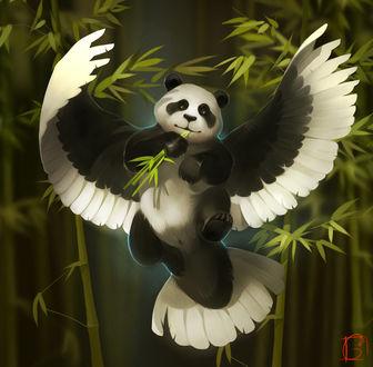 Фото Панда с крыльями держит в лапе бамбуковые веточки, by GaudiBuendia