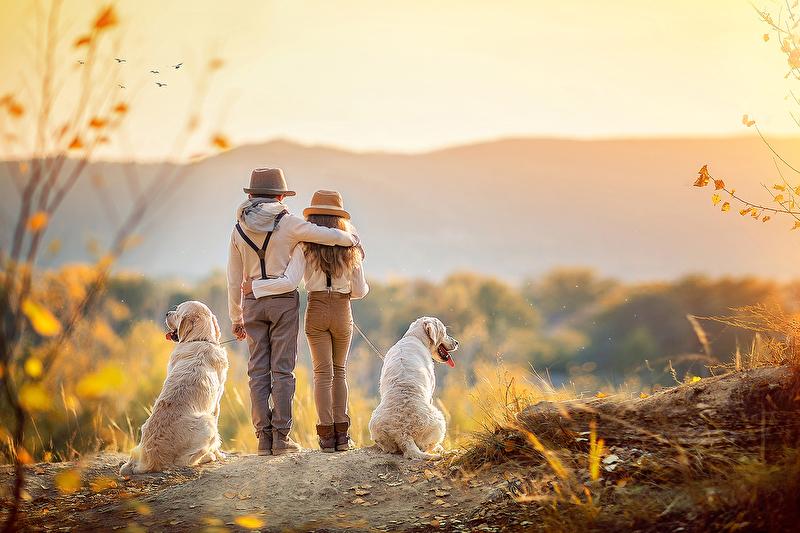 Фото Девочка с мальчиком и собачки на дороге, фотограф Недялкова Ирина