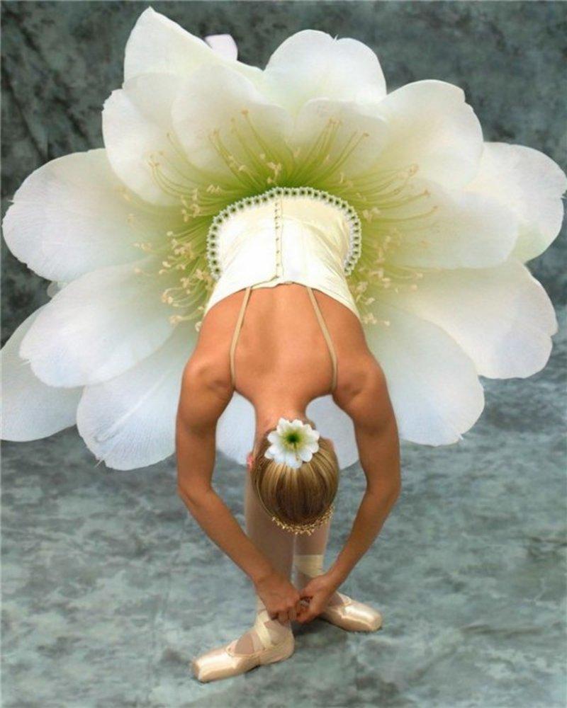 Цветы оптом, балерина с букетом фото