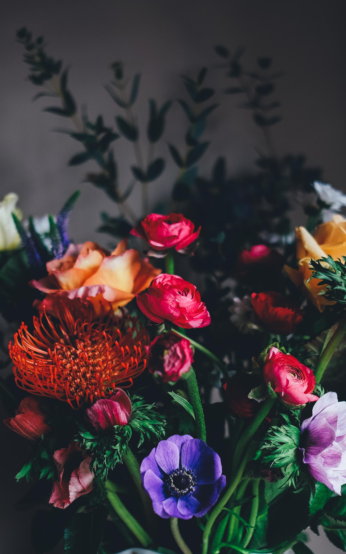 Красивые цветов на заставку телефона