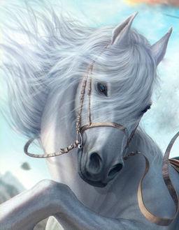 Фото Нарисованная белая лошадь