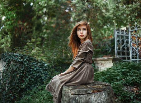 Фото Красивая девушка сидит на пне, на размытом природном фоне, фотограф Александр Боцман