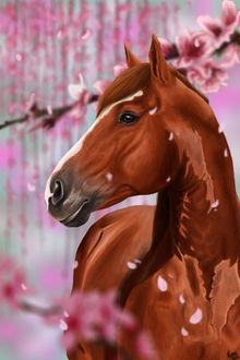 Фото Лошадь стоит среди цветущих веток сакуры, by Xclarxcheex