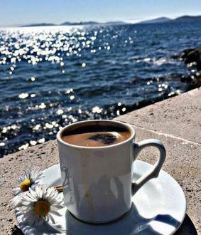 Фото Чашка кофе и ромашки на блюдце стоят на пирсе у моря