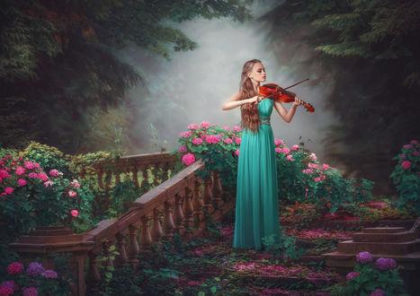 Фото Девушка в длинном зеленом платье, стоит на ступенях лестницы, усыпанной лепестками цветов и играет на скрипке, на фоне природы и цветущих кустов. Фотохудожник Наталья Макушева