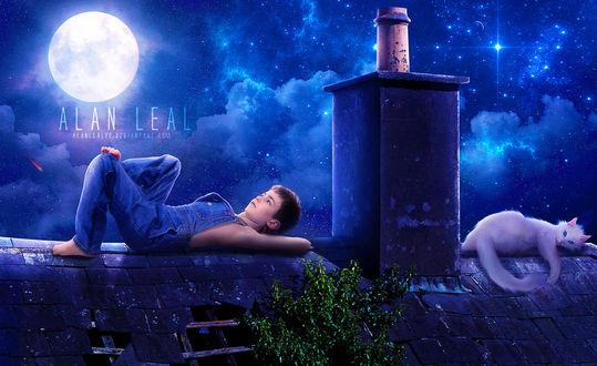 Фото Мальчик по одну сторону от тубы и кот по другую лежат на крыше дома, by alanleal22