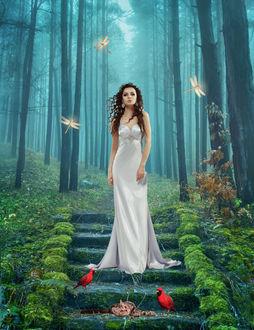 Фото Девушка в райском лесу