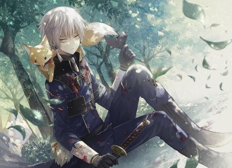 Фото Nakigitsune сидит с катаной и с лисенком на плечах из игры Touken Ranbu / Танец мечей