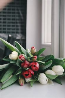 Фото Букетик тюльпанов на столе