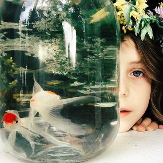 Фото Девочка в венке из цветов, выглядывает из-за банки, где плавают рыбки. Фотограф Ксения Засецкая
