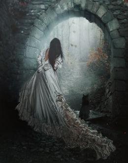 Фото Девушка в длинном белом платье стоит рядом с кошкой и смотрят в арку, by mirandaarts