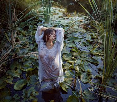 Фото Девушка в белой рубашке стоит в воде, фотограф Ирина Джуль
