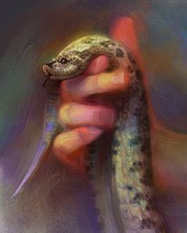 Фото Змея в руке, by TamberElla