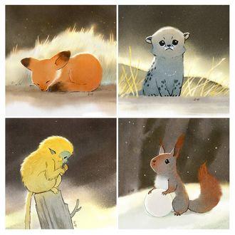 Фото Серия из четырех животных: лисички, обезьяны, белочки и необычного серого детеныша, by 青时