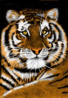 Фото Нарисованный тигр с желтыми глазами