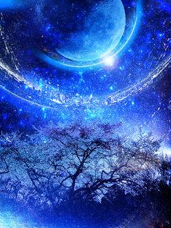 Фото Цветущая сакура на фоне ночного неба, by ゾノ丸