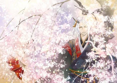Фото Белокурый демон с белой змеей в ветвях цветущей сакуры, Rien