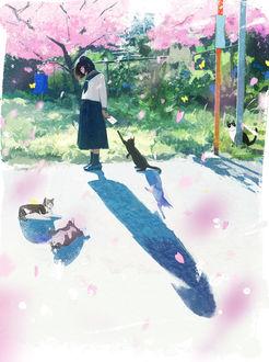 Фото Черная кошка пытается достать лапой письмо в руке школьницы, by 中村至宏