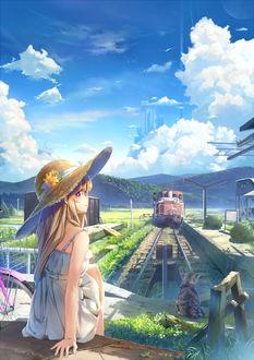 Фото Девушка в шляпке сидит рядом с котом у железной дороги