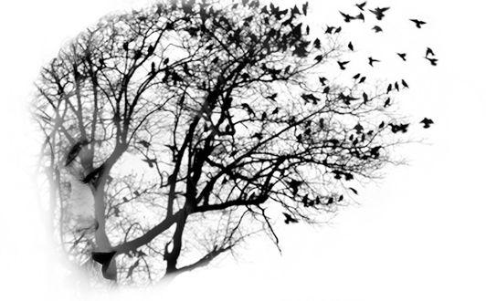 Фото Портрет девушки с изображением на волосах деревьев с птицами, by LinkyQ