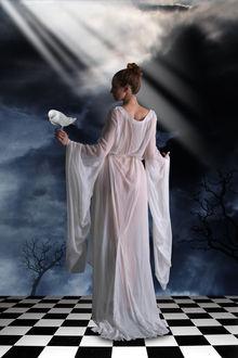 Фото Девушка в белом стоит на поверхности в виде шахматной доски, держа в руке белую птицу, by amiens