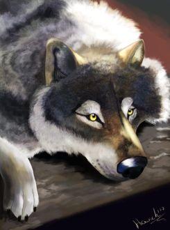 Фото Серый волк, by HavickArt (© Arinka jini), добавлено: 19.03.2017 02:58