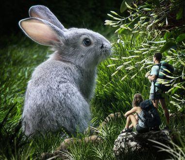 Фото Мальчик с девочкой смотрят на большого кролика, by Dmitry Senichkin