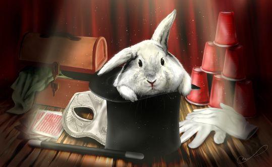 Фото Белый кролик сидит в шляпе фокусника, by Martith (© Margo Fly), добавлено: 20.03.2017 14:19