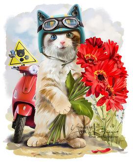 Фото Котенок с разноцветными глазами в шлеме держит в лапках букет красных герберов, by Kajenna